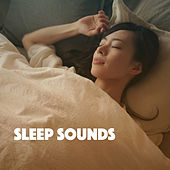 Sleep Sounds de Various Artists