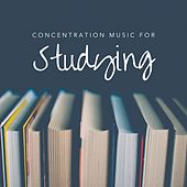 Concentration Music for Studying by Various Artists