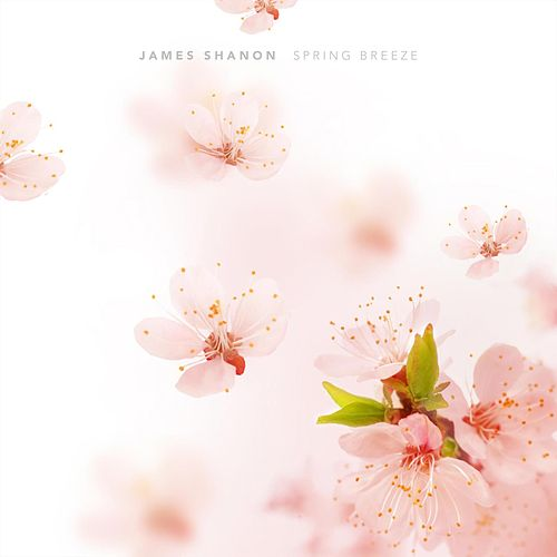 Spring Breeze by James Shanon