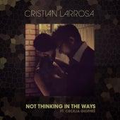Not Thinking in the Ways de Cristian Larrosa