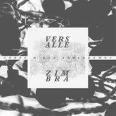 Sobre o Que Aprendemos by Versalle