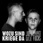 Wozu sind Kriege da de Joel Gutje