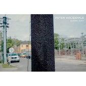 Commonplace de Peter Holsapple