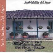 Inolvidables del Ayer, Vol. 7 de Various Artists