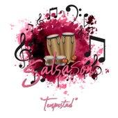 Salsasón: Tempestad de Various Artists