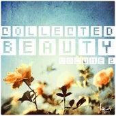 Collected Beauty, Vol. 2 de Various Artists