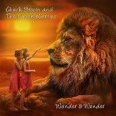 Wander & Wonder by Chuck Brown (2)