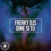 Dime Si Tú by Freaky DJ's