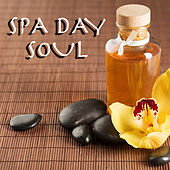 Spa Day Soul by Various Artists