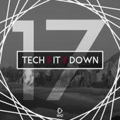 Tech It Down!, Vol. 17 de Various Artists