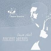 Ancient Dreams by Naseer Shamma