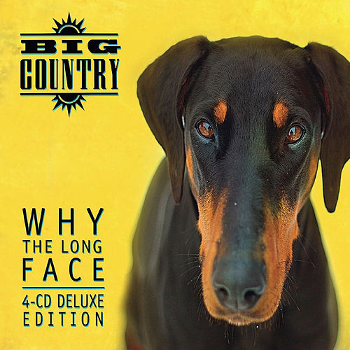 Why the Long Face by Big Country