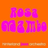 Rosa Mambo von Hinterland Jazz Orchestra