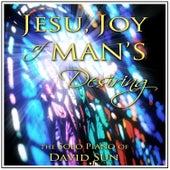 Jesu, Joy of Man's Desiring (The Solo Piano of David Sun) de David Sun