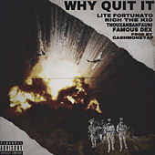 Why Quit It (feat. Rich the Kid, Famous Dex, Thouxanbanfauni, Reggie Mills) de Lite Fortunato