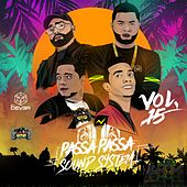 Passa Passa Sound System, Vol. 15 de Various Artists