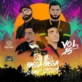 Passa Passa Sound System, Vol. 15 by Various Artists