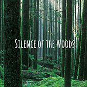 Silence of the Woods by Nature Sounds (1)