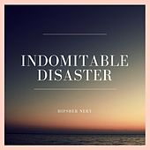 Indomitable Disaster by Hipsher Nery