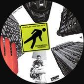 Travel Instrumentals (10 Year Anniversary Edition) by Damu The Fudgemunk