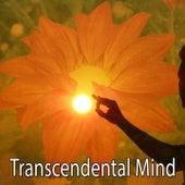 Transcendental Mind von Entspannungsmusik