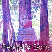 Prepare For Exams by Classical Study Music (1)