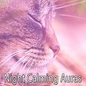 Night Calming Auras by Ocean Sounds Collection (1)
