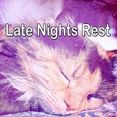 Late Nights Rest de White Noise Babies