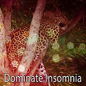 Dominate Insomnia by Nature Sound Series
