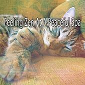 Feeling Zen At A Peaceful Spa von Best Relaxing SPA Music