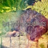 Spas Soothing Natural Auras de Best Relaxing SPA Music