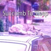 Succumb To Sleep de Smart Baby Lullaby