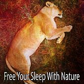 Free Your Sleep With Nature by Rockabye Lullaby