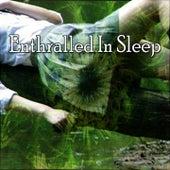 Enthralled In Sleep by Baby Sleep Sleep