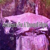Ambience For A Tranquil Night by Ocean Sounds Collection (1)