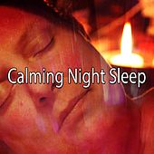 Calming Night Sleep de White Noise Babies