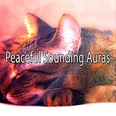 Peaceful Sounding Auras de Water Sound Natural White Noise