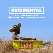 Toast to our Differences (feat. Jaykae, Cadet & Shungudzo) [Remix] di Rudimental