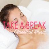 Take A Break: Classical Selection de Various Artists