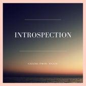 Introspection by Ceezer