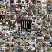 Vor die Hunde by Leto