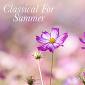 Classical For Summer de Various Artists