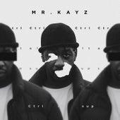 Ctrl-Alt-Sup de Mr Kayz