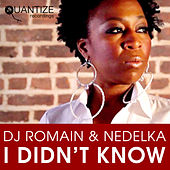 I Didn't Know by DJ Romain