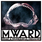 What a Wonderful Industry de M. Ward