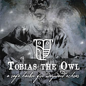 A Safe Harbor for Wayward Echoes by Tobias the Owl