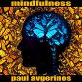 Beginner's Mind de Paul Avgerinos