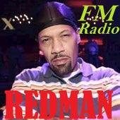 FM Radio von Redman