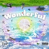 Wonderful de B-Guy Griffin