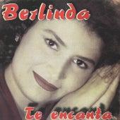 Te Encanta by Berlinda Gil